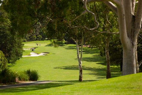 hill golf club castle hill golf club golf deals