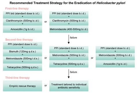eradication of helicobacter pylori