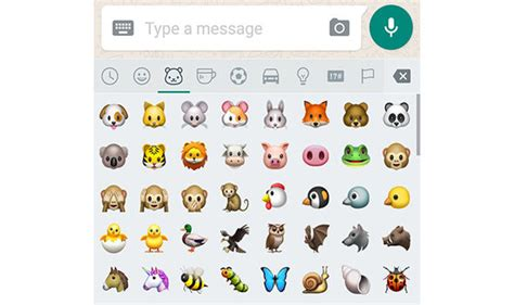 emoji express whatsapp update gives users hundreds of new emoji here s