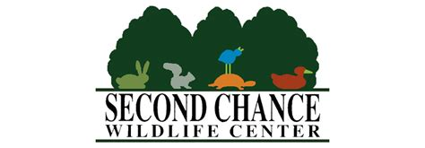 second chance a modern tale happily inc phase 1 new facility for second chance wildlife center