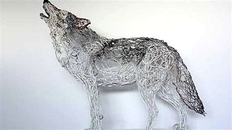 Wire Wolf Competition Wire 113 best animals wolves images on animals fox and wolf spirit