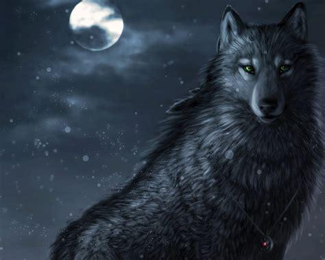 imagenes de negro lobo lobo de olho verde gallery
