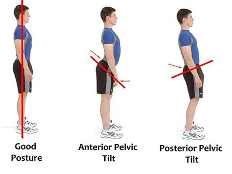 better back posture the deadlift how to master the king of all exercises