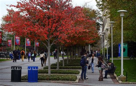 Stony Brook Graduate School Mba by European Languages Literatures And Cultures