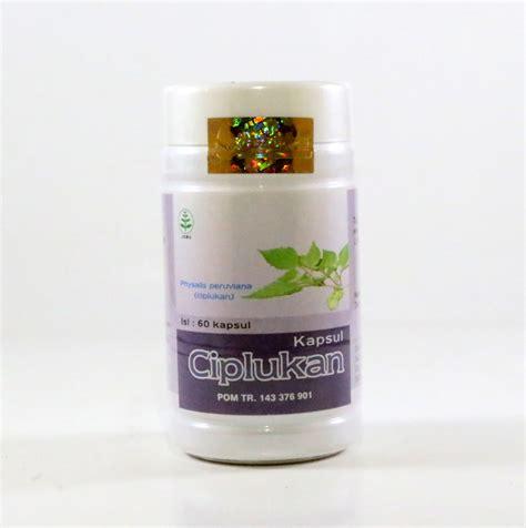 Obat Herbal Winata kapsul ciplukan semarang toko herbal semarang