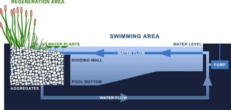 swimming pool filter system diagram ecological water systems archives