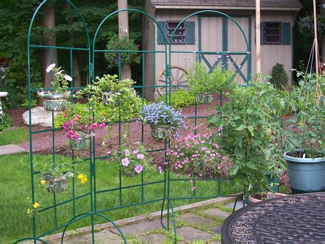 Hanging Plants For Patio the garden path 187 by maron