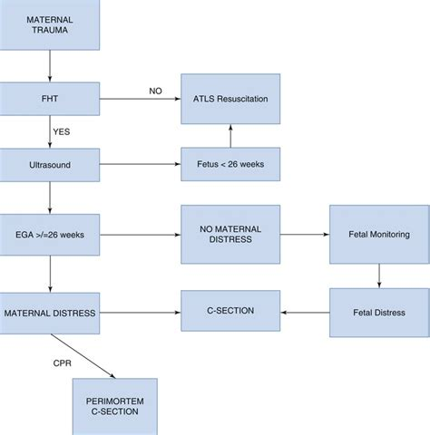 0 31 Clinical Algorithm For Emergency Cesarean Section And