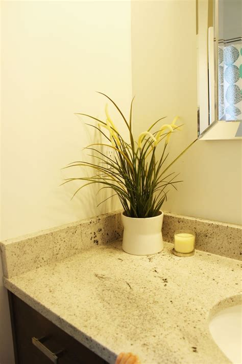 plants for the bathroom how to decorate a bathroom without clutter