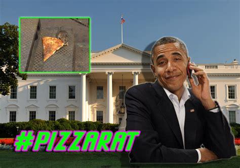 white house pizza obama invites pizza rat to white house