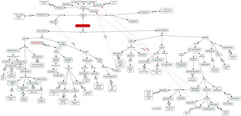 bacterial identification flowchart bacterial flowchart cmap