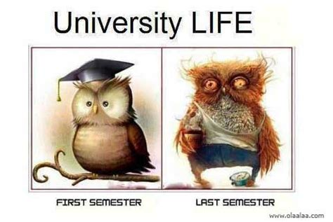 Funny Memes About Life - electrical engineering memes