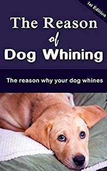 why is my puppy whining the reason of whining the reason why your whines kindle edition by william