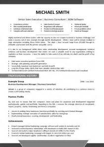 Resumae Template by We Can Help With Professional Resume Writing Resume