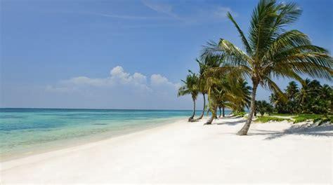 best hotels in dominica best hotels in the republic caribbean journal