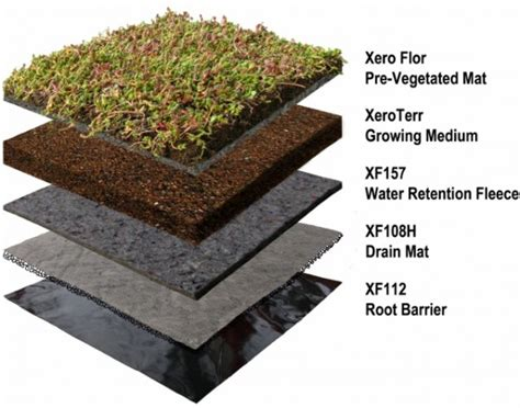 green roofs a useful solution to embellish our home and new york s javits center installing green roof earthtechling