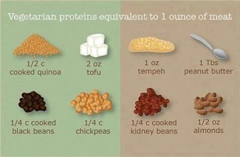 protein 9 oz steak vegetarian proteins equivalent to 1 ounce of