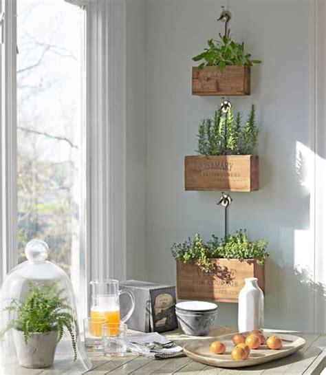north window plants diy crafts