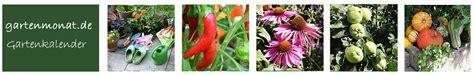 Gartenkalender Was Ist Wann Zu Tun by Gartenkalender Was Im Garten Zu Tun Ist Nach