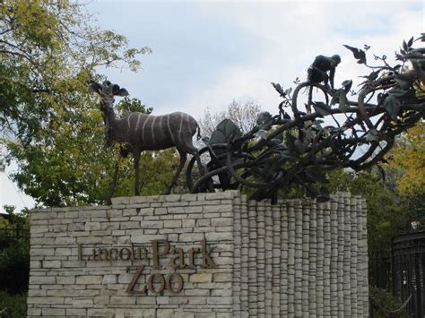 entrance picture of lincoln park zoo chicago tripadvisor