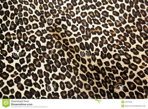 leopard pattern image leopard pattern royalty free stock images image 23101229