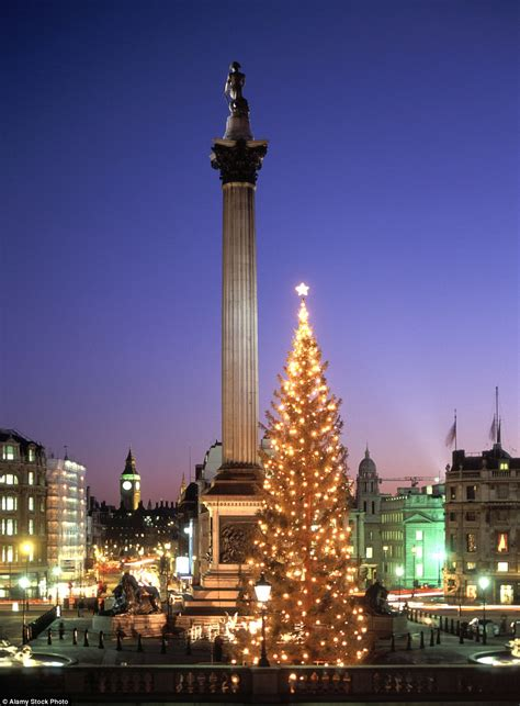 Solar Christmas Decorations Mailonline Travel Reveals The Best Christmas Trees In The