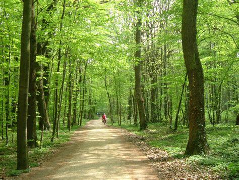 Und Bilder by Http Www Mountainbike Wetterau De Bilder