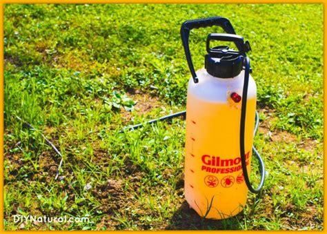 Killer For Garden by Garden Bug Spray Pepper Solution
