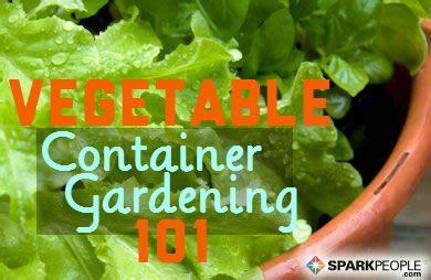 Pot Vegetable Gardening For Beginners A Beginner S Guide To Container Vegetable Gardening