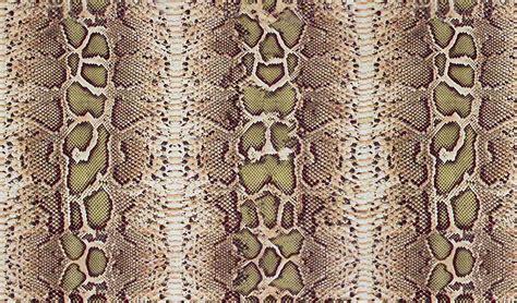 wallpapers snake skin wallpapers snakeskin print wallpaper free download hd widescreen