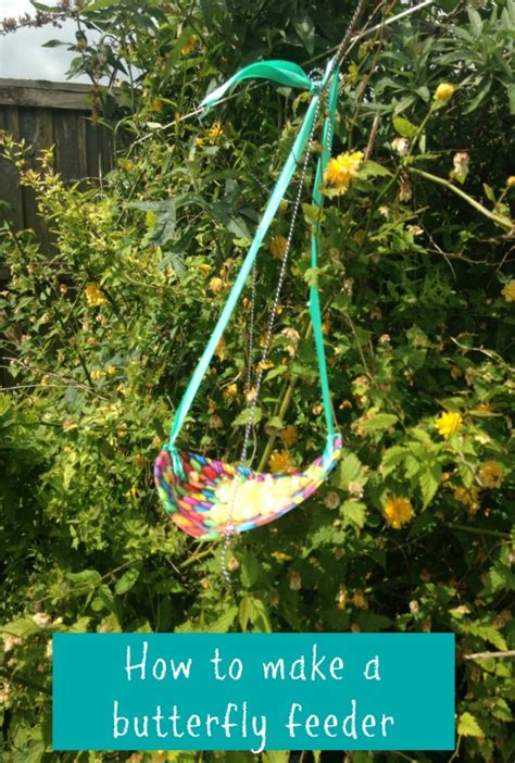 How To Make A Butterfly Garden by How To Make A Butterfly Feeder Baby Budgeting