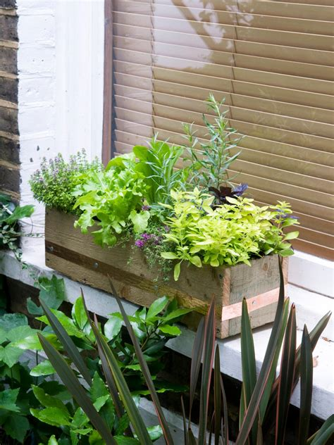 herb window box make a window box of herbs and lettuce hgtv