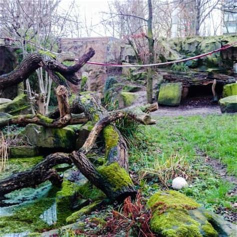 Zoologischer Garten In Köln by Zoologischer Garten K 246 Ln Zoos Riehl Cologne