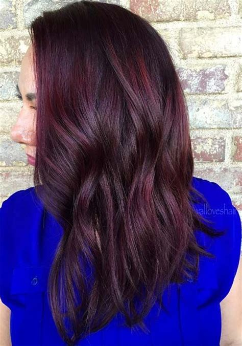 bozeman haircut places best 25 dark red hair ideas on pinterest dark red hair dye