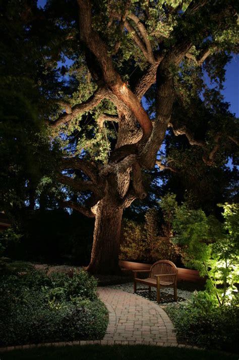 landscape lighting uplight trees walled sacramento escape asian landscape