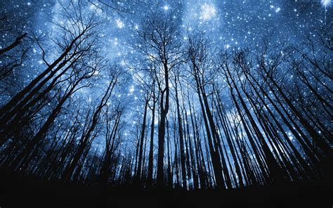 starry night sky wallpapers wallpaper cave
