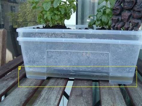 Self Watering Mini Garden Planter Diy Home Pinterest Diy Self Watering Planter