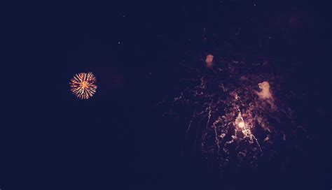 new year goat gif new year fireworks gif find on giphy