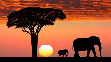 imagenes i love kenia kenia destino preferido en 193 frica interviajeros