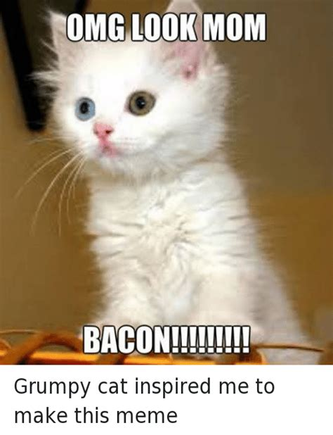 Make A Grumpy Cat Meme - omg look mom baconii it grumpy cat inspired me to make