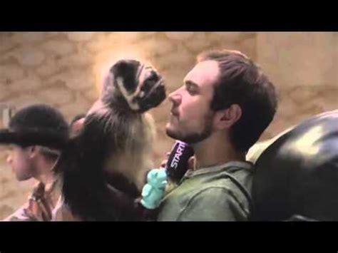 puppy monkey baby remix puppy monkey baby sparta remix