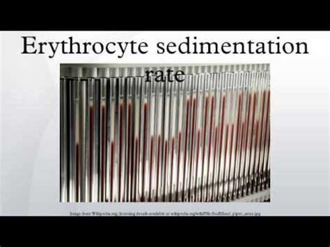 sed rate westergren erythrocyte sedimentation rate