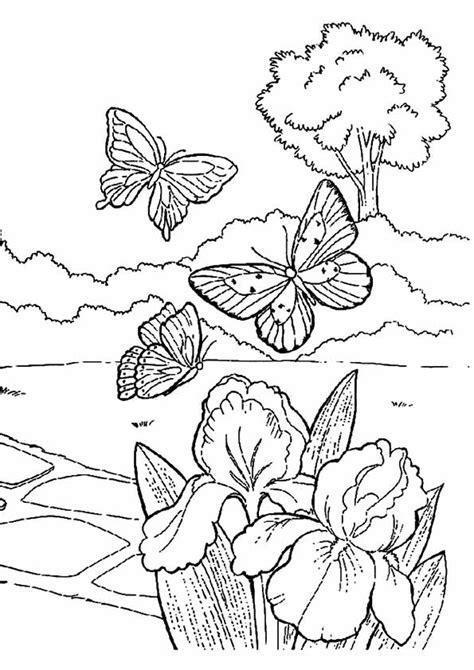 pages for toddlers coloring pages best coloring pages for