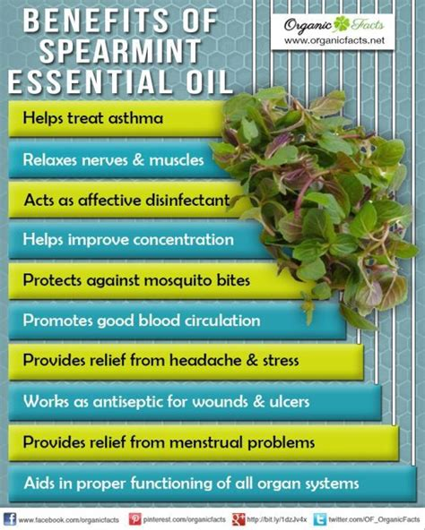 Essential oil blends doterra oil and doterra essential oils