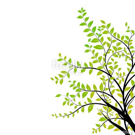 quot tree branch vector green and natural floral design