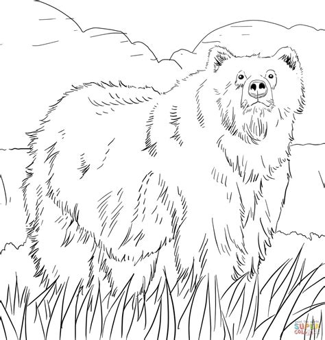 alaskan grizzly bear coloring page free printable