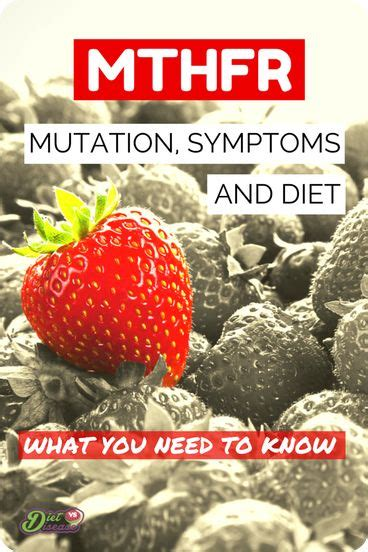 Mthfr And Detox Lyme Bite by 261 Best Methylation Images On Adrenal Fatigue