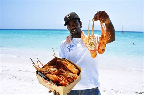 lobster boat in jamaica enjoy scrumptious crustaceans like lobster and shrimp when