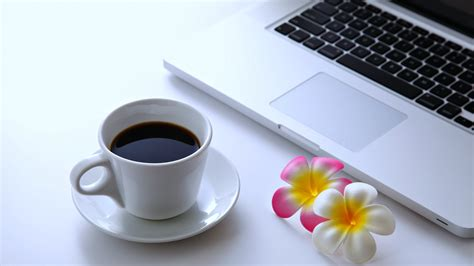 coffee wallpaper for pc coffee flowers laptop desktop pc computer relax net