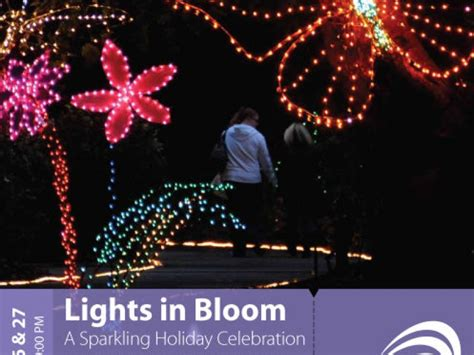 holiday lights bloom at selby gardens sarasota fl patch